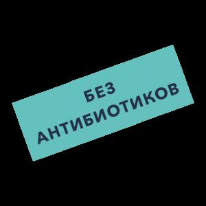 nzm_stoerer_russisch